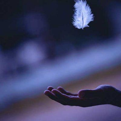 angel card reading houston